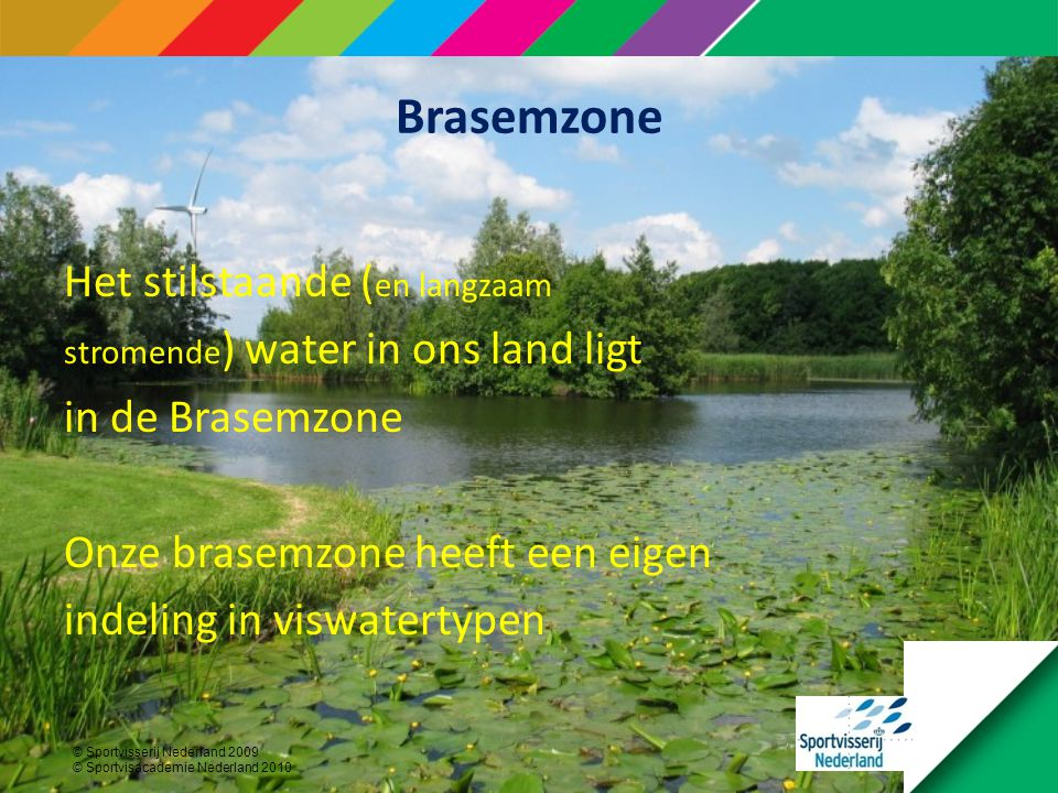 Brasemzone Het stilstaande (en langzaam in de Brasemzone