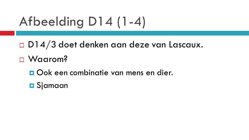 Afbeelding D14 (1-4) D14/3 doet denken aan deze van Lascaux. Waarom