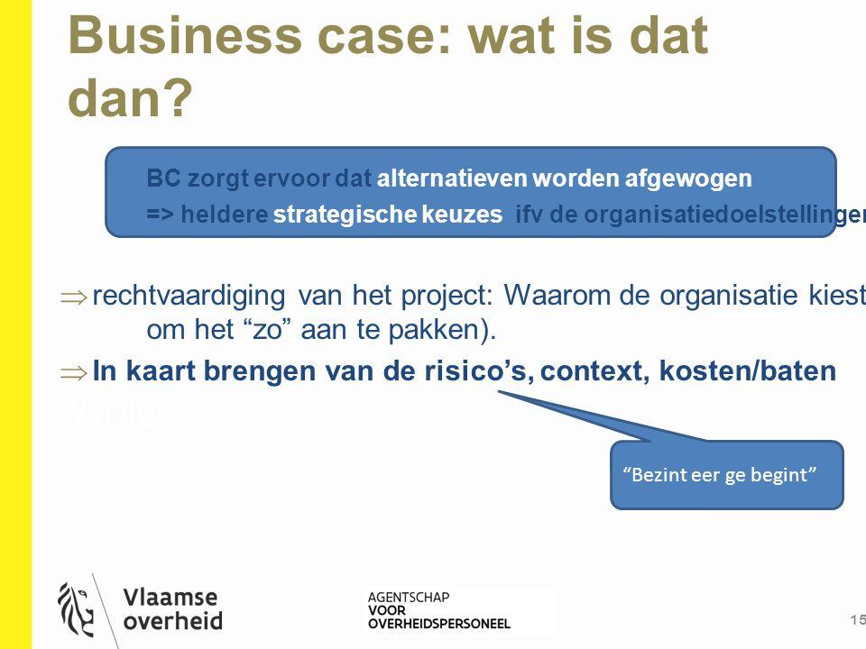 Business case: wat is dat dan