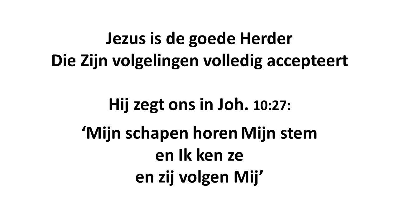 Jezus is de goede Herder Die Zijn volgelingen volledig accepteert