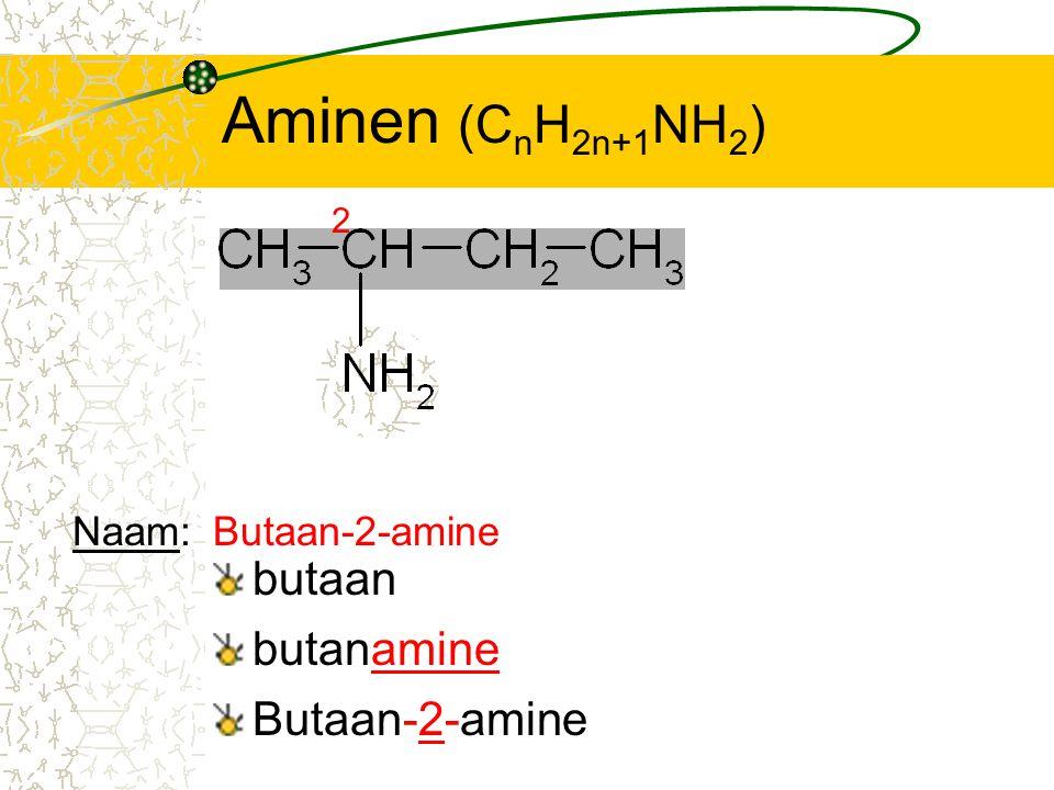 Aminen (CnH2n+1NH2) butaan butanamine Butaan-2-amine Naam: