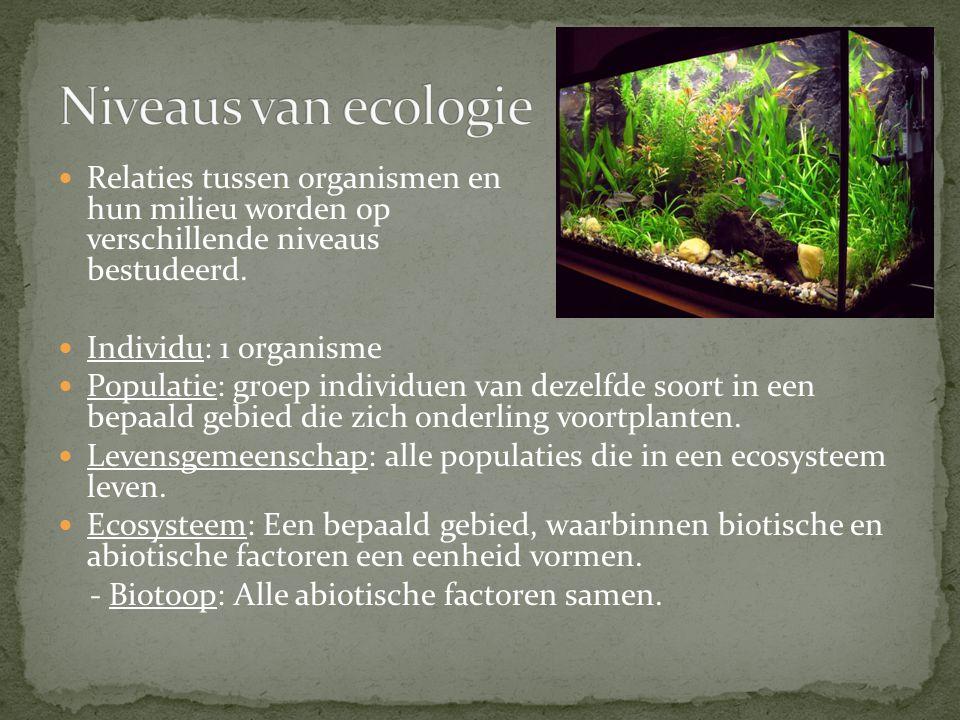 Niveaus van ecologie Relaties tussen organismen en hun milieu worden op verschillende niveaus bestudeerd.