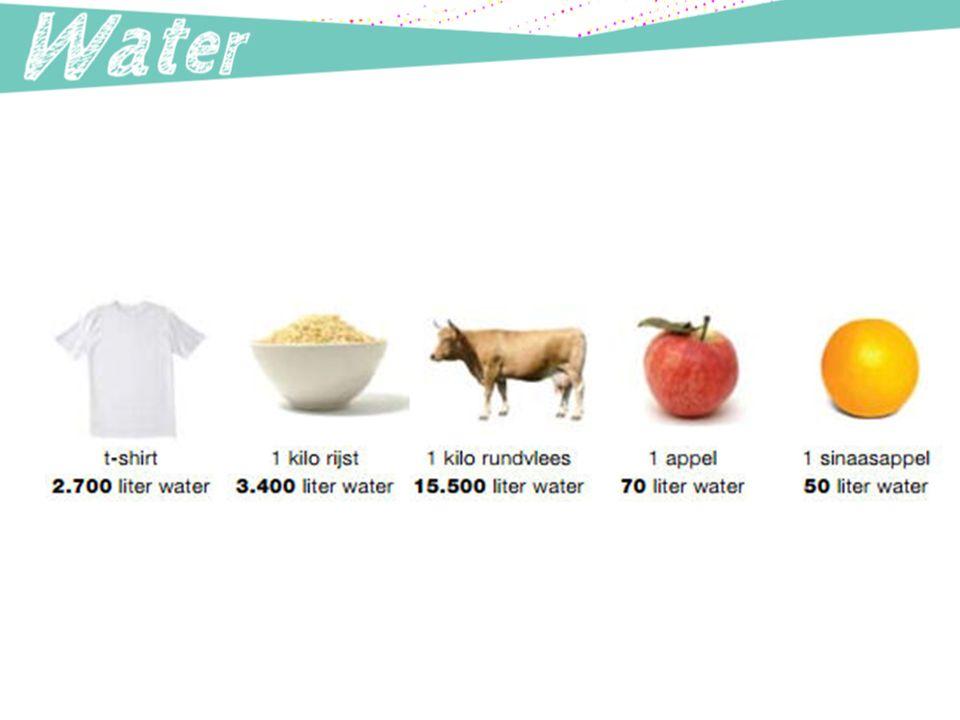 Vegetariers hebben een veel lager indirect waterverbruik dan vleeseters.