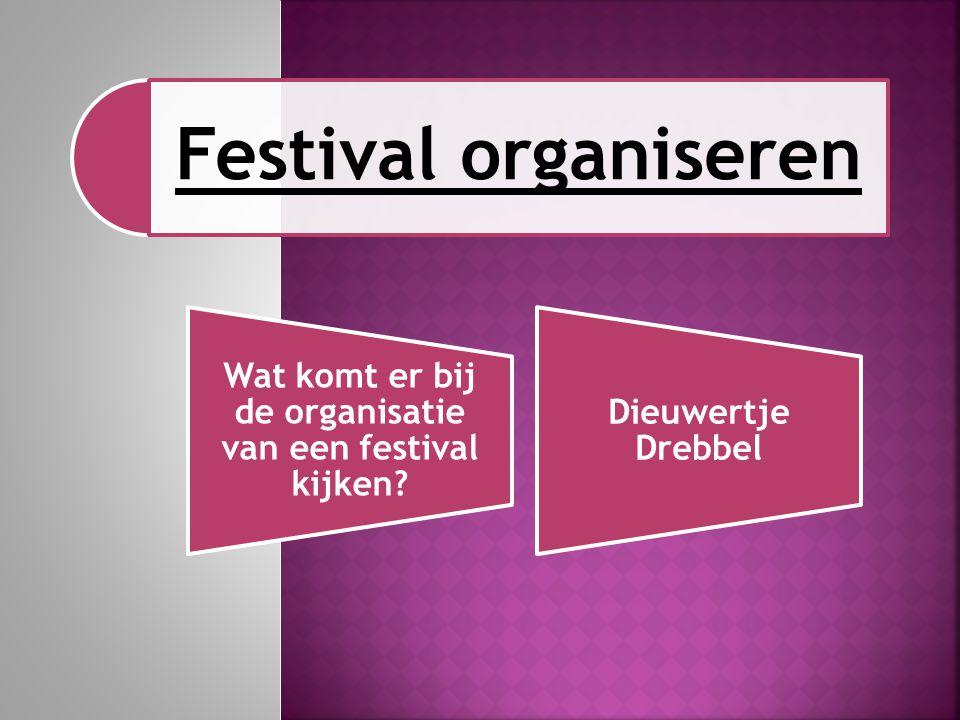 Wat komt er bij de organisatie van een festival kijken