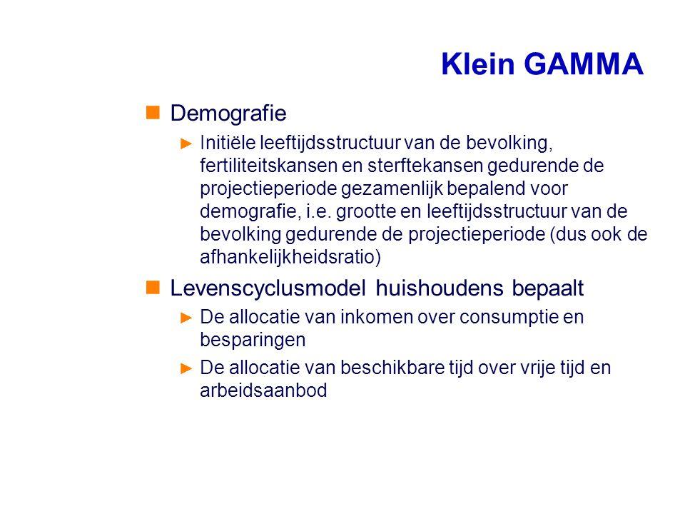 Klein GAMMA Demografie Levenscyclusmodel huishoudens bepaalt
