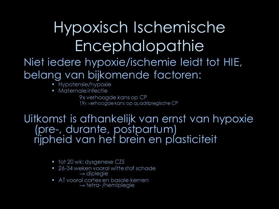 Hypoxisch Ischemische Encephalopathie