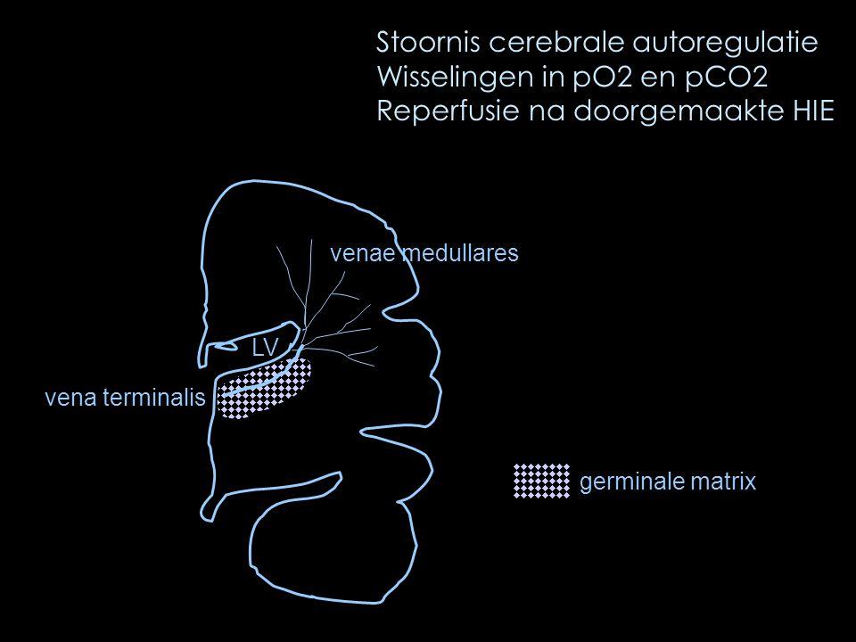 Stoornis cerebrale autoregulatie Wisselingen in pO2 en pCO2 Reperfusie na doorgemaakte HIE