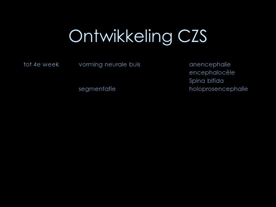 Ontwikkeling CZS tot 4e week vorming neurale buis anencephalie