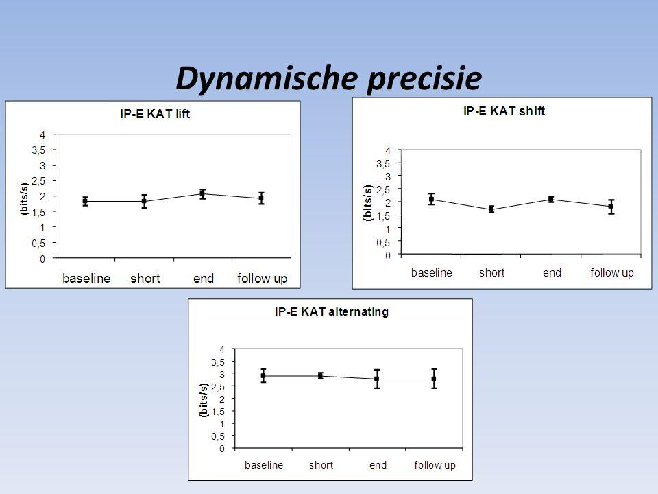 Dynamische precisie