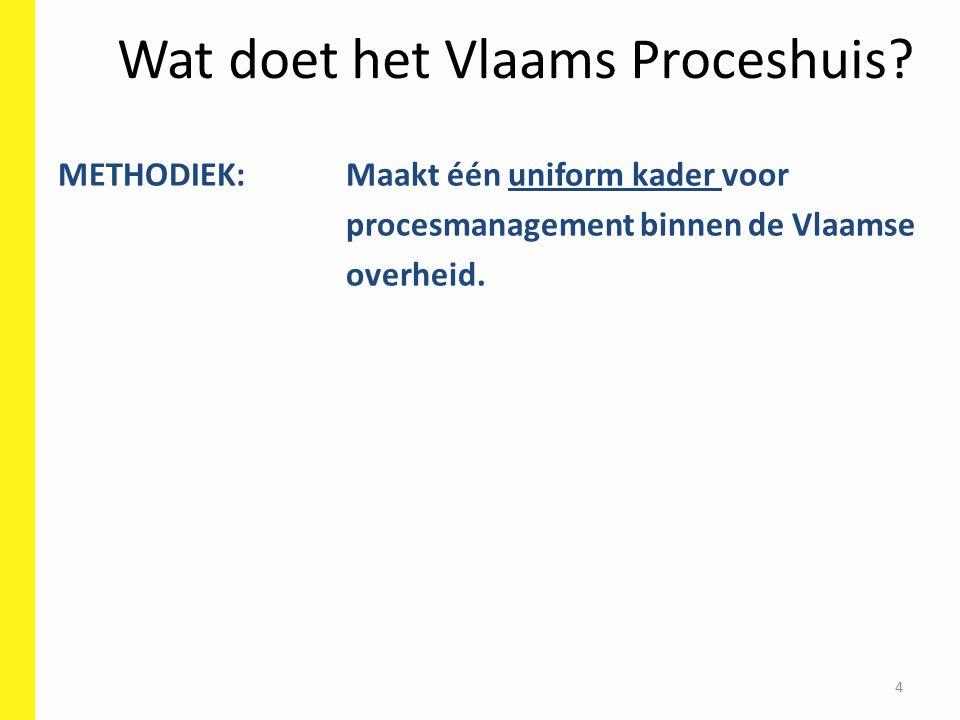 Wat doet het Vlaams Proceshuis