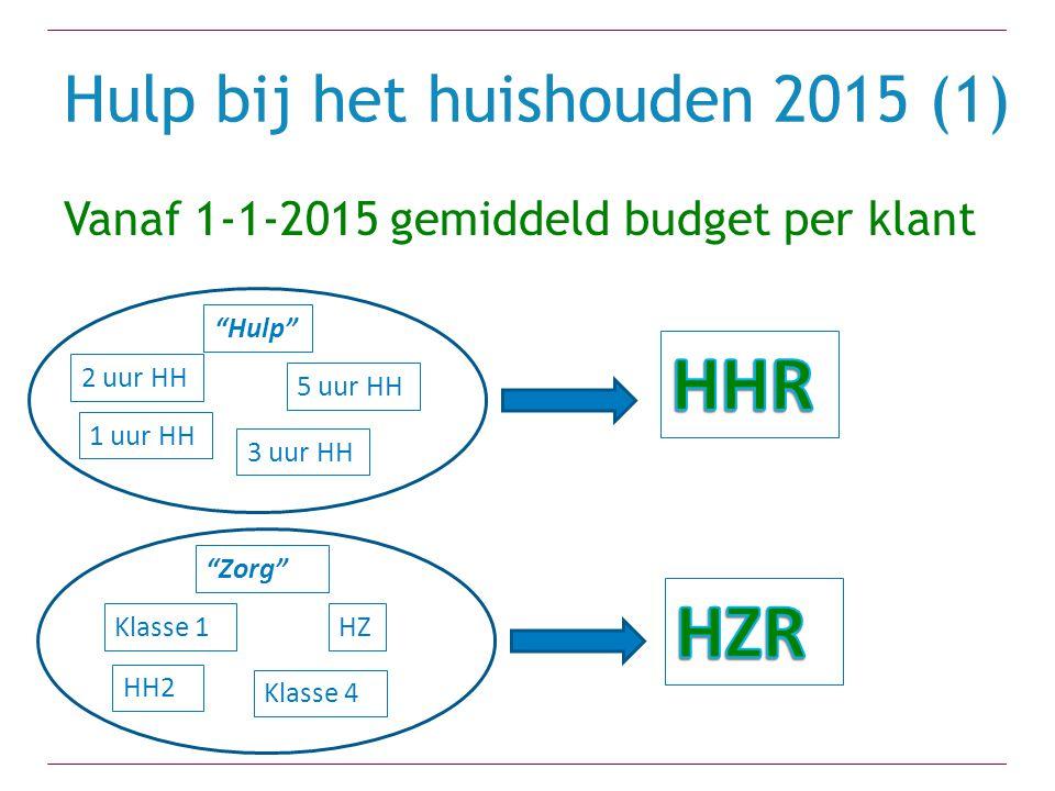 Hulp bij het huishouden 2015 (1)