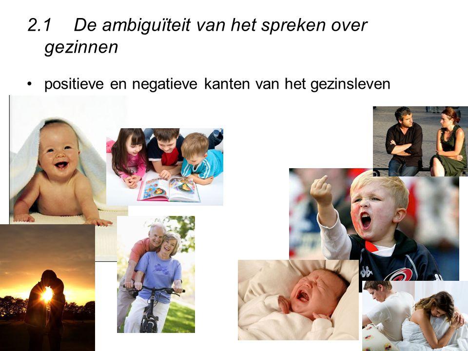 2.1 De ambiguïteit van het spreken over gezinnen