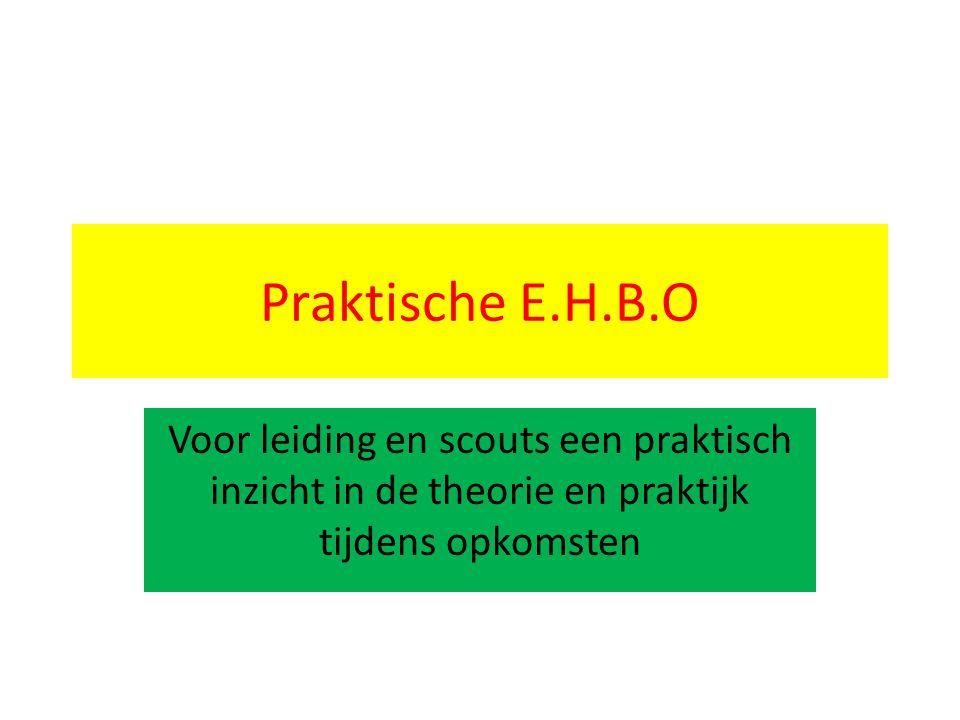 Praktische E.H.B.O Voor leiding en scouts een praktisch inzicht in de theorie en praktijk tijdens opkomsten.