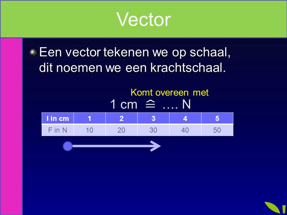 Vector Een vector tekenen we op schaal, dit noemen we een krachtschaal. 1 cm …. N. Komt overeen met.