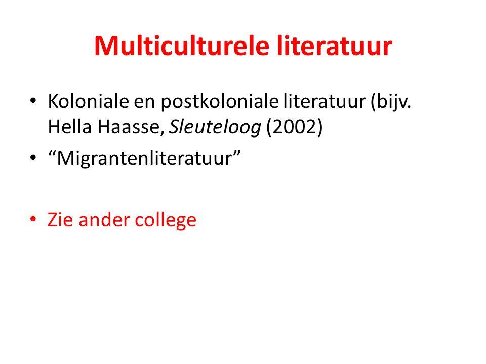 Multiculturele literatuur