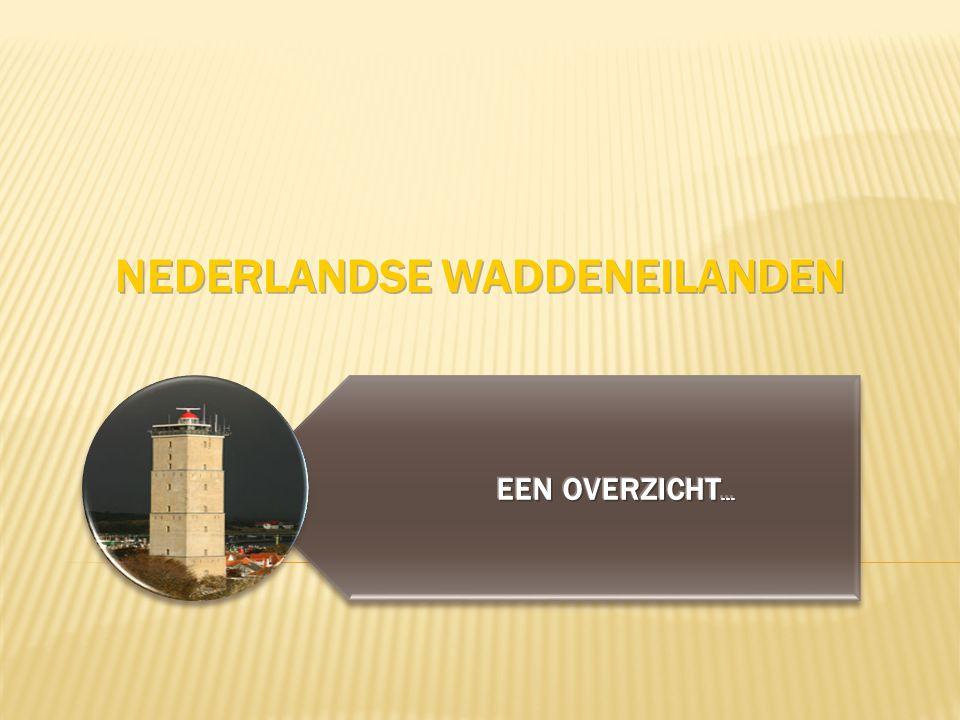 Nederlandse Waddeneilanden