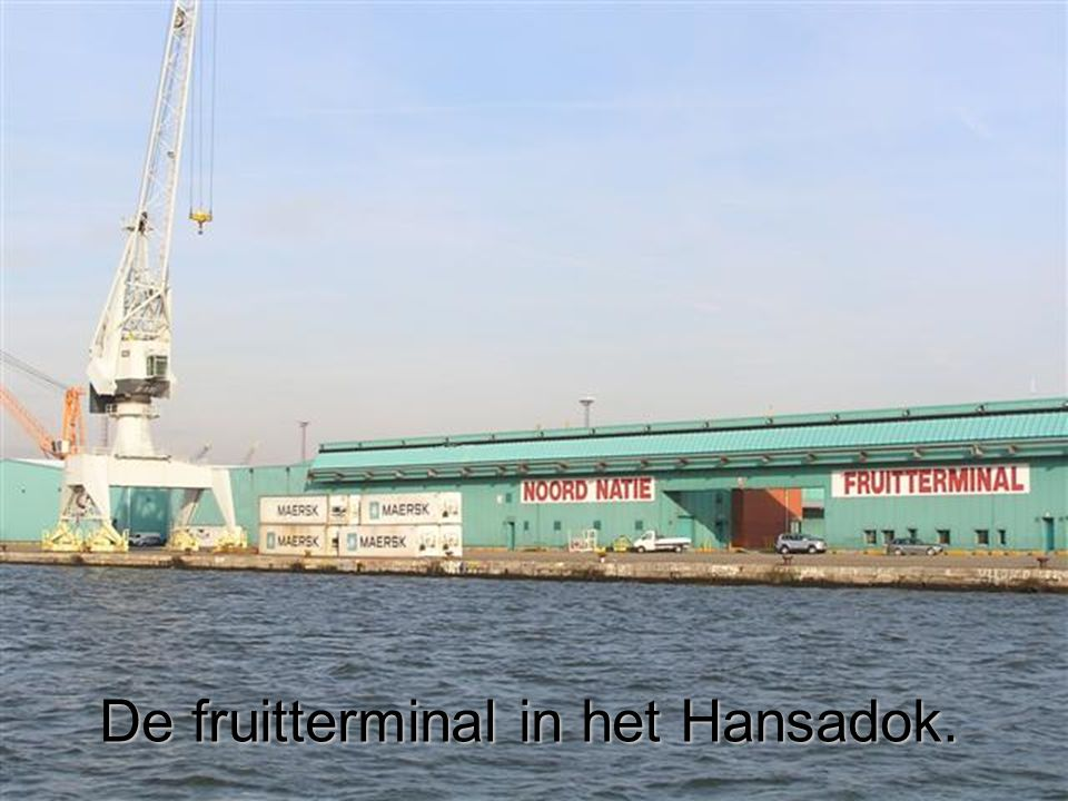 De fruitterminal in het Hansadok.