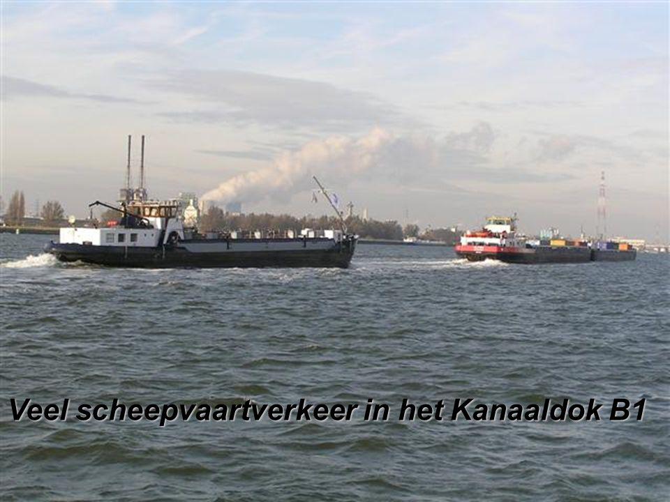 Veel scheepvaartverkeer in het Kanaaldok B1