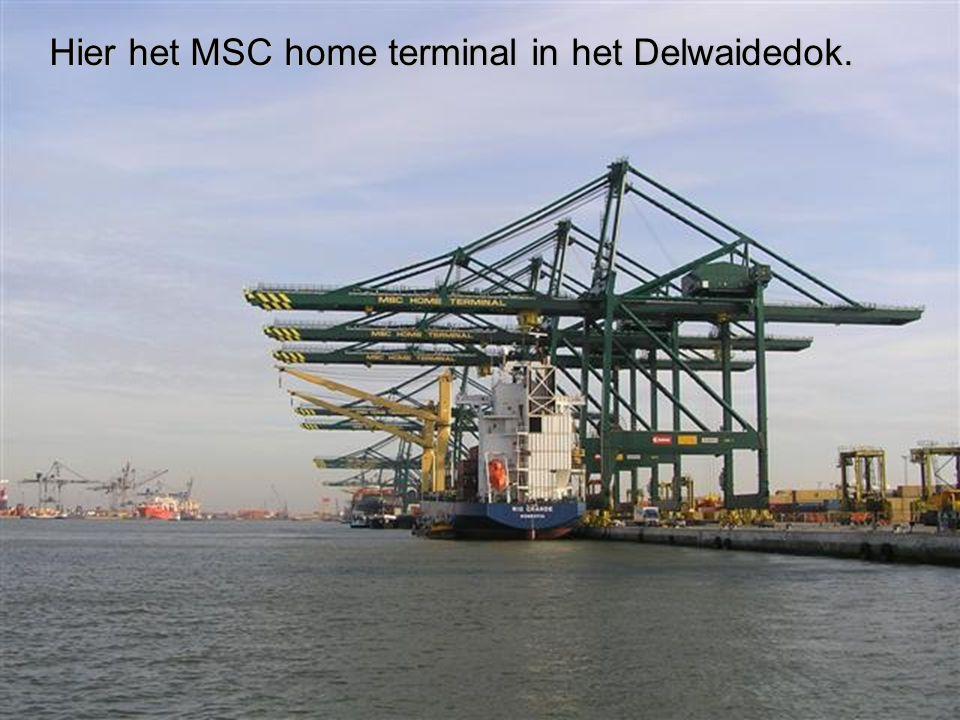 Hier het MSC home terminal in het Delwaidedok.