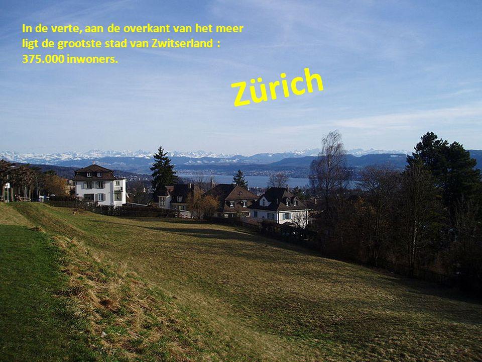 Zürich In de verte, aan de overkant van het meer