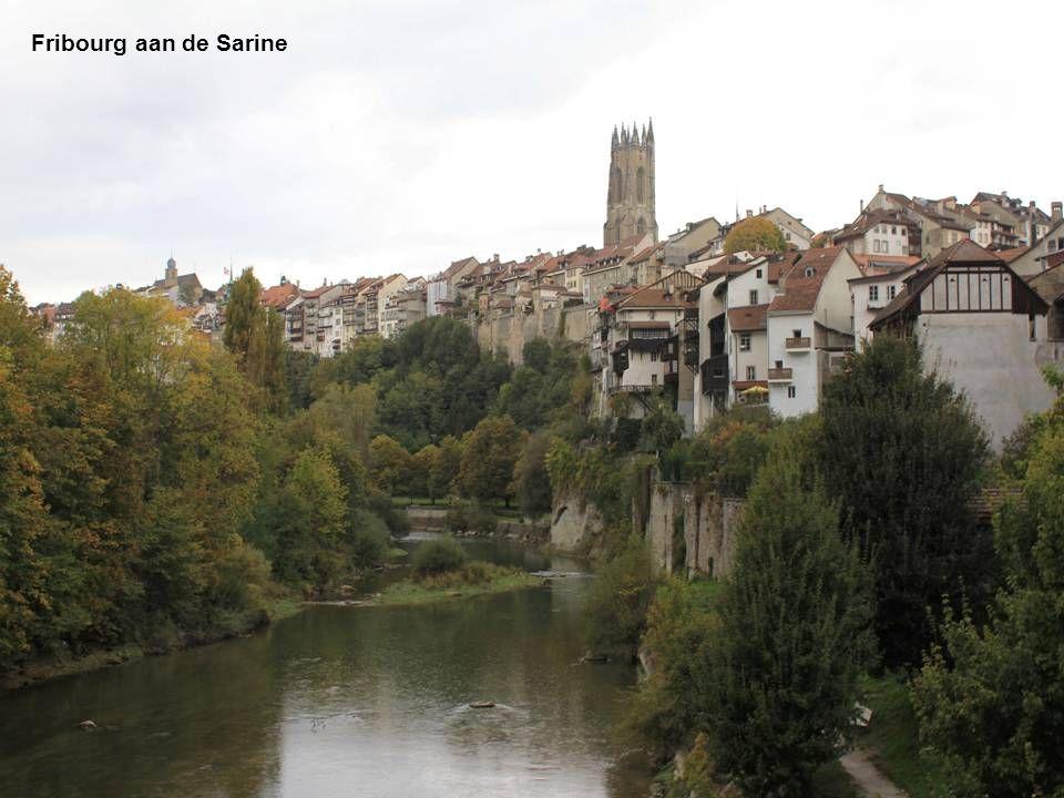 Fribourg aan de Sarine
