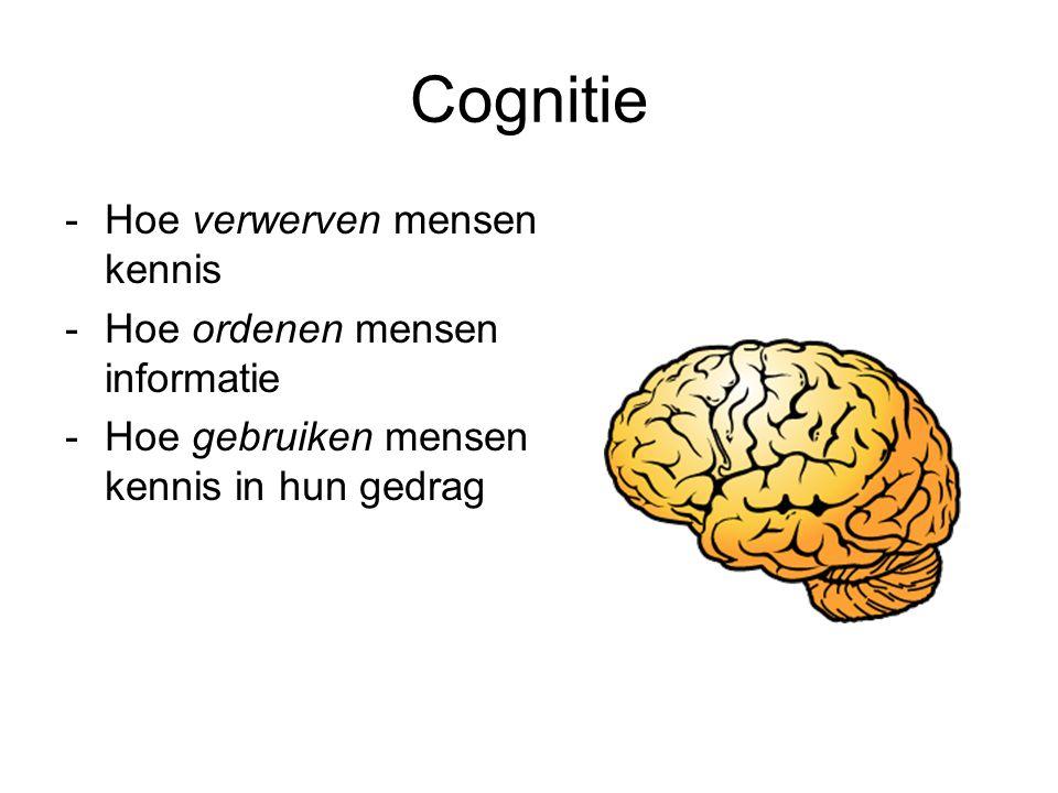 Cognitie Hoe verwerven mensen kennis Hoe ordenen mensen informatie