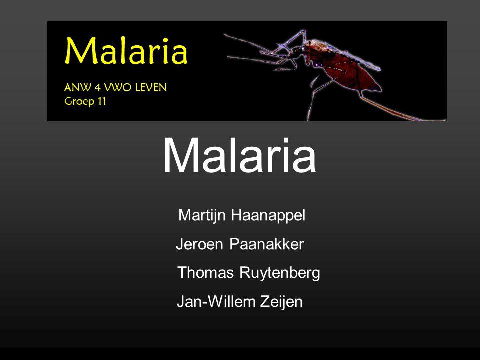 Malaria Martijn Haanappel Jeroen Paanakker Thomas Ruytenberg