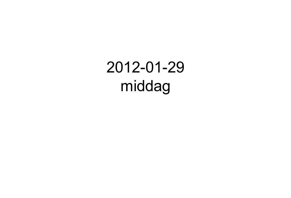 2012-01-29 middag