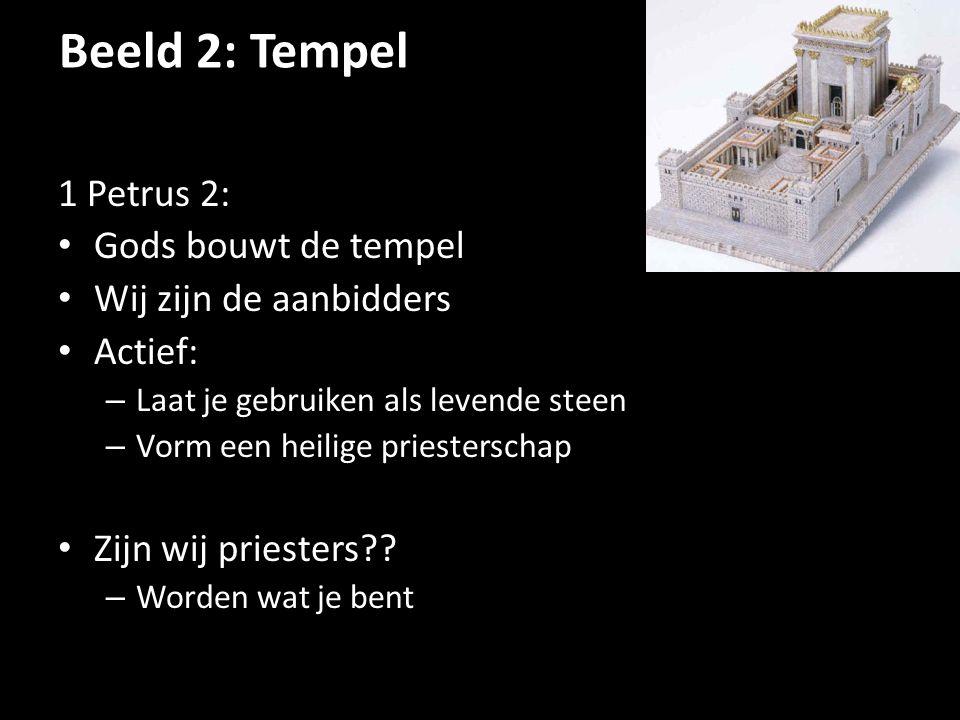Beeld 2: Tempel 1 Petrus 2: Gods bouwt de tempel