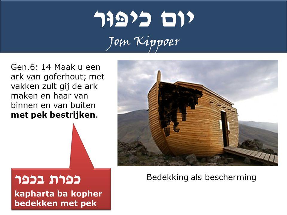Gen.6: 14 Maak u een ark van goferhout; met vakken zult gij de ark maken en haar van binnen en van buiten met pek bestrijken.