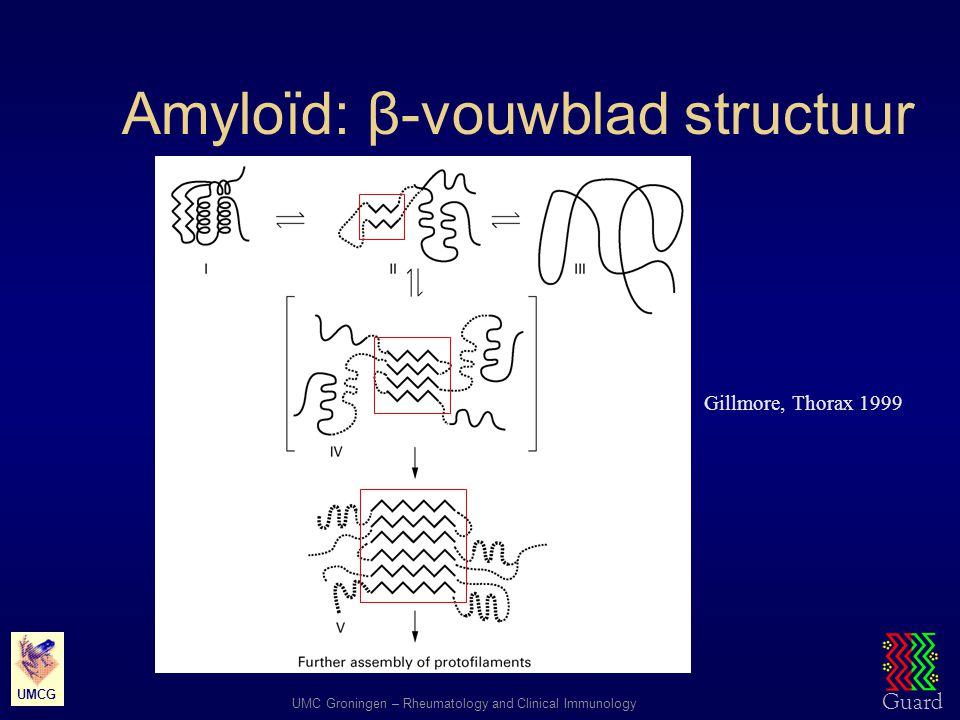 Amyloïd: β-vouwblad structuur