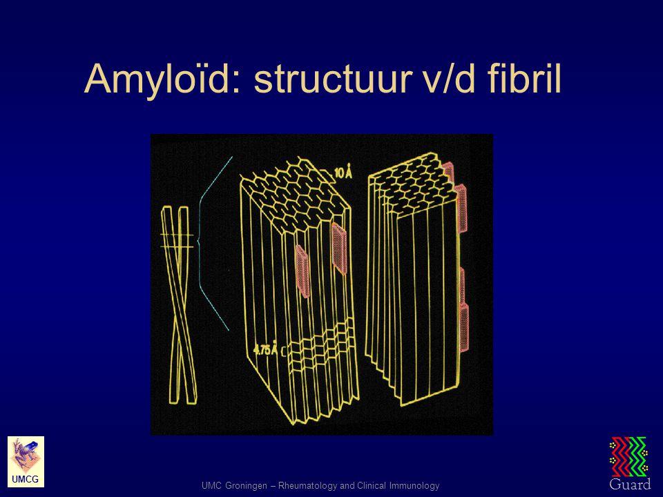 Amyloïd: structuur v/d fibril