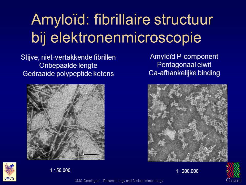Amyloïd: fibrillaire structuur bij elektronenmicroscopie