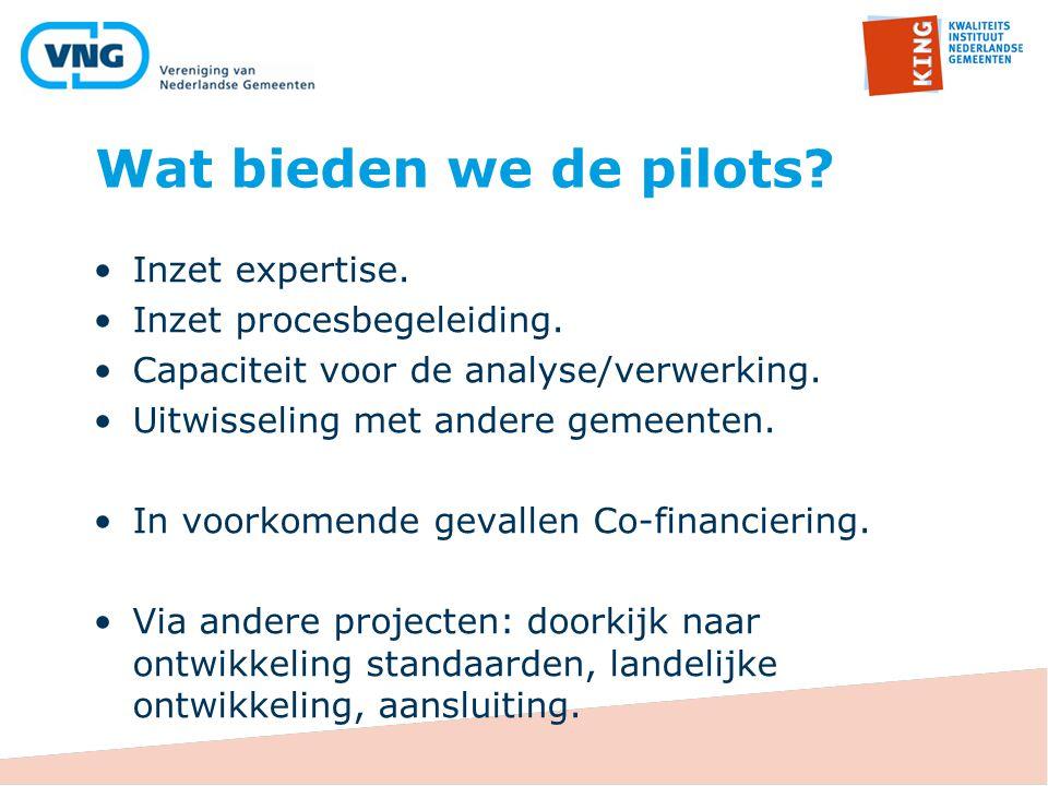 Wat bieden we de pilots Inzet expertise. Inzet procesbegeleiding.