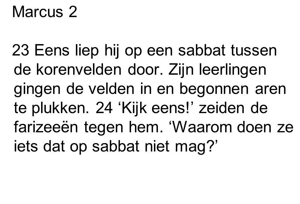 Marcus 2