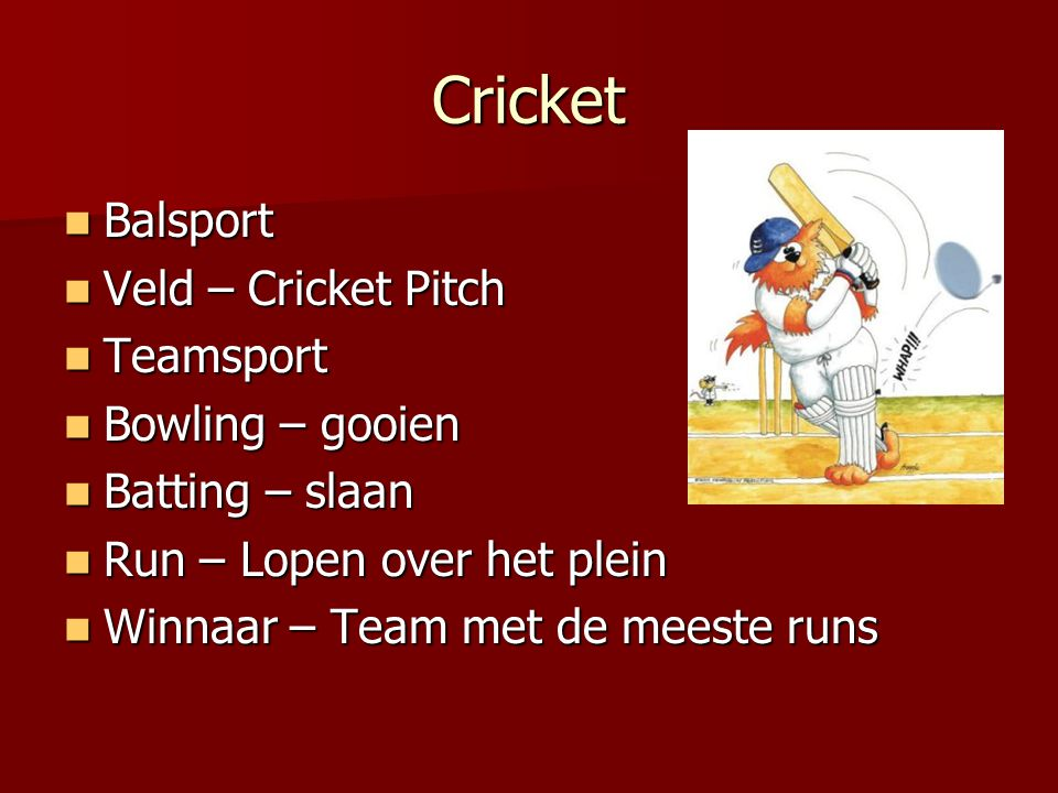 Cricket Balsport Veld – Cricket Pitch Teamsport Bowling – gooien