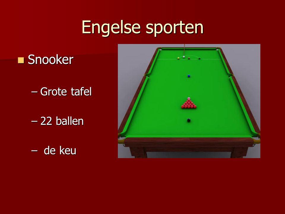 Engelse sporten Snooker Grote tafel 22 ballen de keu