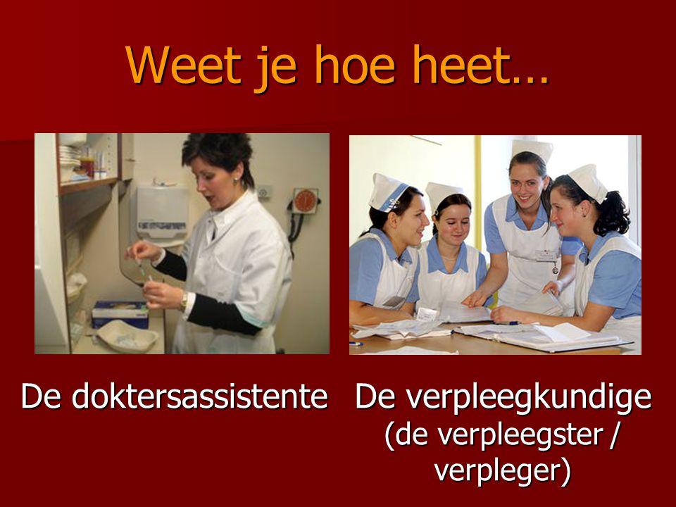De verpleegkundige (de verpleegster / verpleger)