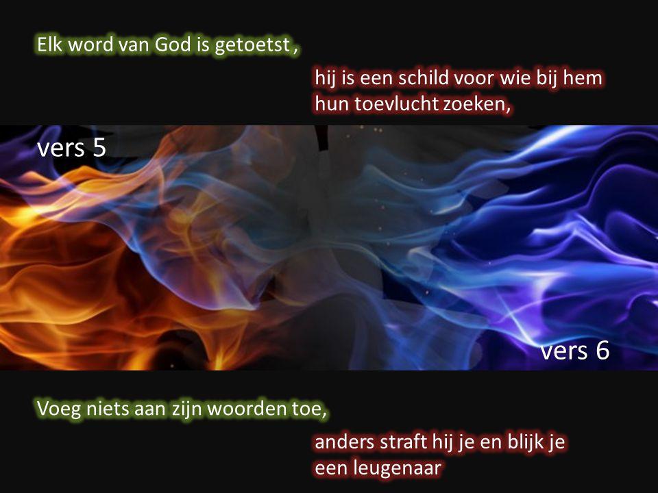 vers 5 vers 6 Elk word van God is getoetst ,