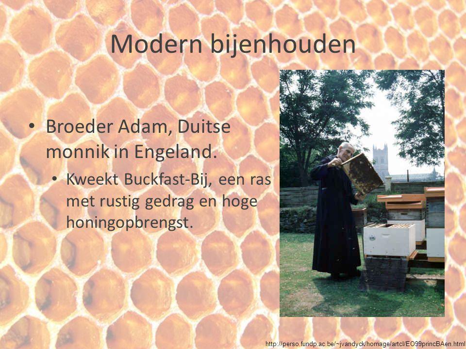 Modern bijenhouden Broeder Adam, Duitse monnik in Engeland.