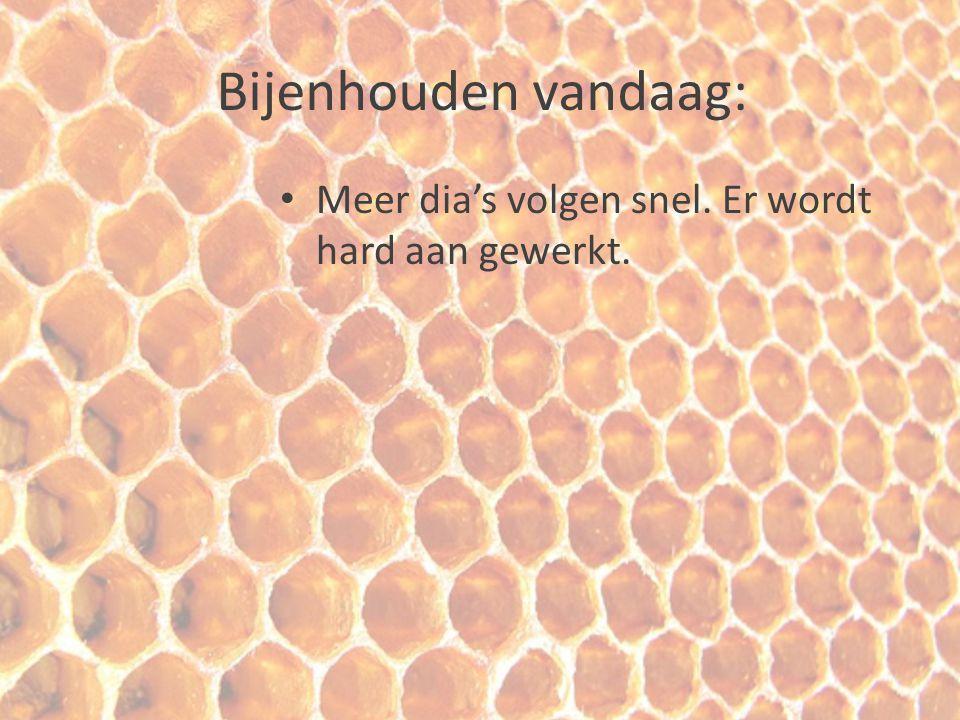Bijenhouden vandaag: Meer dia's volgen snel. Er wordt hard aan gewerkt.