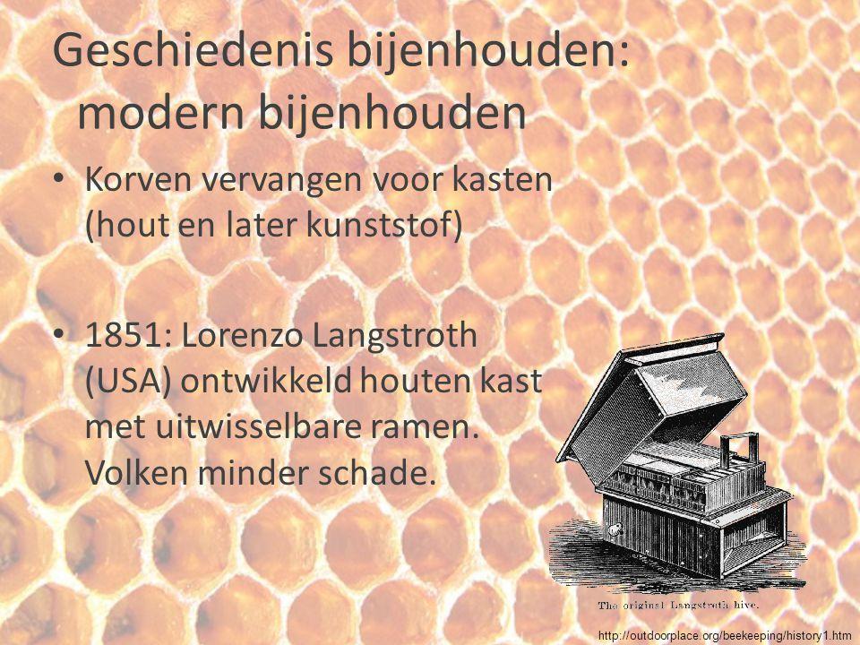 Geschiedenis bijenhouden: modern bijenhouden