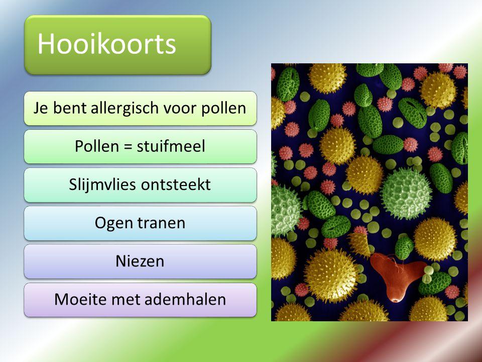 Je bent allergisch voor pollen