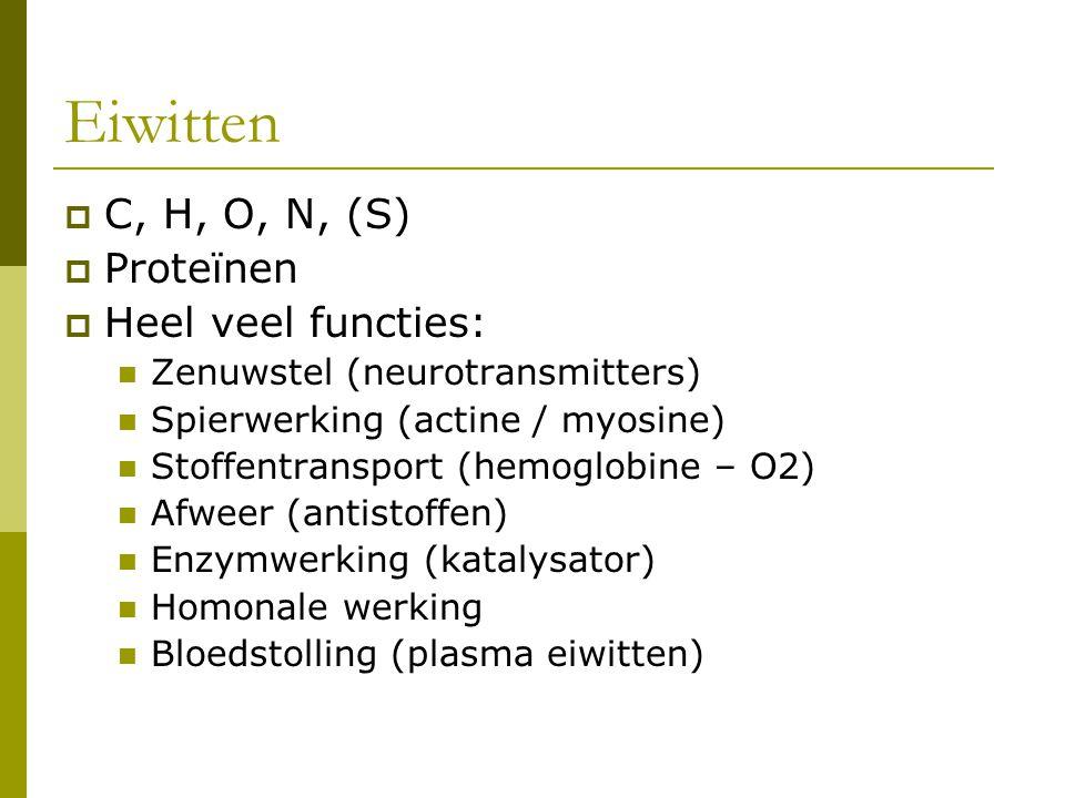 Eiwitten C, H, O, N, (S) Proteïnen Heel veel functies: