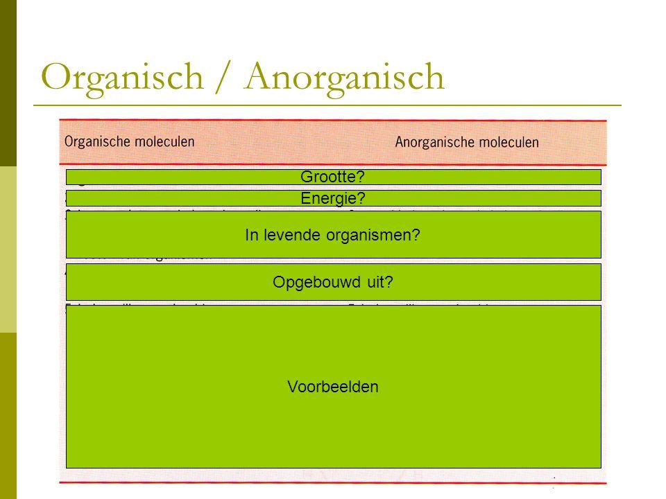 Organisch / Anorganisch