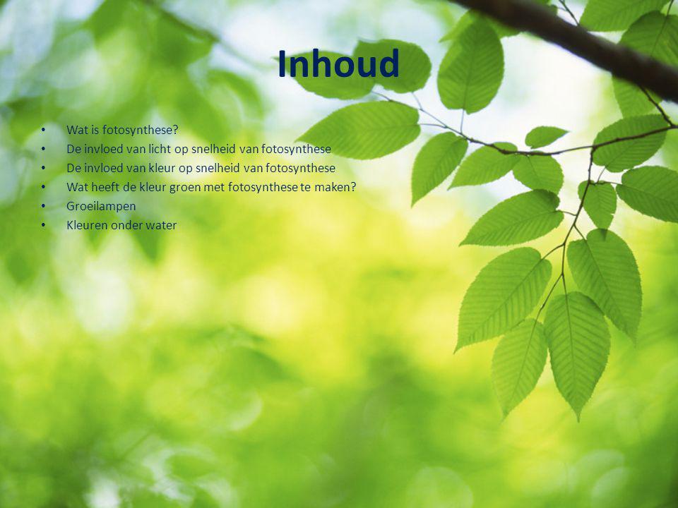 Inhoud Wat is fotosynthese