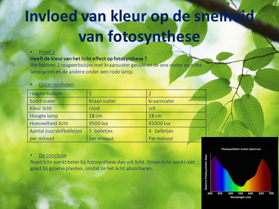Invloed van kleur op de snelheid van fotosynthese