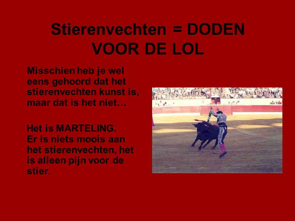 Stierenvechten = DODEN VOOR DE LOL