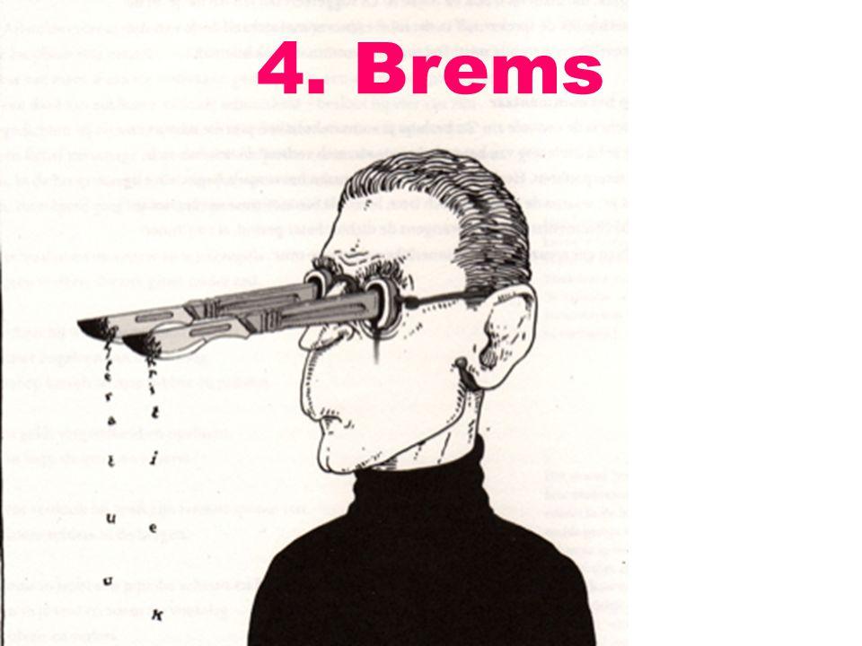 4. Brems