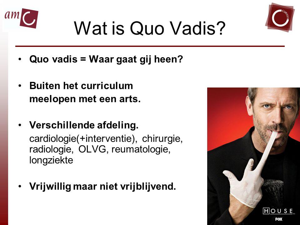 Wat is Quo Vadis Quo vadis = Waar gaat gij heen